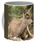 At Rest In The Rockies Coffee Mug