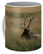 At Rest Coffee Mug