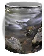 At The Banias River 3 Coffee Mug