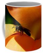 #ataraxis Coffee Mug