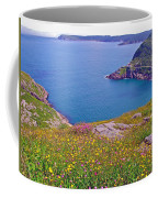 Atlantic Ocean From Signal Hill National Historic Site In Saint John's-nl Coffee Mug