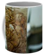 Atlantic Salmon Stocking Coffee Mug