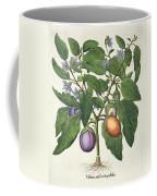 Aubergine Melanzana Fructu Pallido Coffee Mug