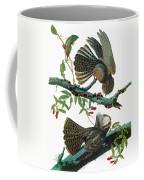 Audubon Chuck-will's Widow Coffee Mug
