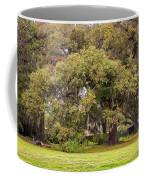 Audubon Park Coffee Mug