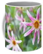 August Flower Gardens Coffee Mug