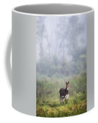 August Morning - Donkey In The Field. Coffee Mug by Gary Heller