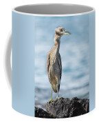 Aukuu Coffee Mug