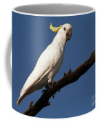 Australian Bird Coffee Mug