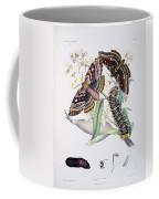 Australian Butterflies Coffee Mug by Philip Ralley