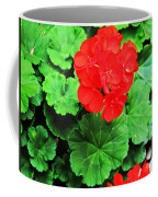 Austrian Red Coffee Mug