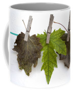 autumm is hanged out - Autumn color leaves Coffee Mug