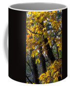 Autumn Coffee Mug by Anonymous