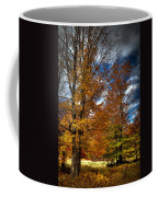 Autumn At Mc Cauley Mountain Coffee Mug