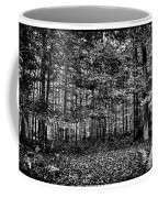 Autumn At Mccauley Mountain IIi Coffee Mug
