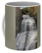 Autumn At Montour Falls Coffee Mug