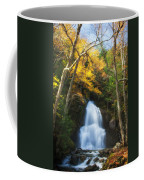 Autumn At Moss Glenn Falls Coffee Mug