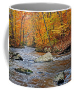 Autumn At The Black River Coffee Mug