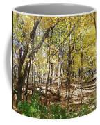 Autumn At Waterfall Glen Coffee Mug