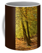 Autumn Beeches Coffee Mug