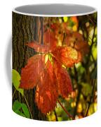 Autumn Begins 2 Coffee Mug