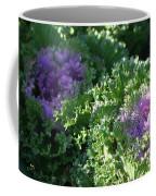 Autumn Cabbage Coffee Mug