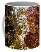 Autumn Chestnut Canopy   Coffee Mug