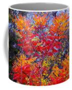 Autumn Colors - 113 Coffee Mug
