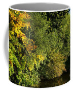 Autumn Colors 3 Coffee Mug