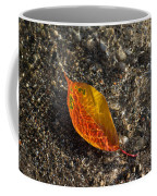 Autumn Colors And Playful Sunlight Patterns - Cherry Leaf Coffee Mug