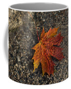 Autumn Colors And Playful Sunlight Patterns - Maple Leaf Coffee Mug