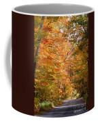 Autumn Colors - Colorful Fall Leaves Wisconsin IIi Coffee Mug