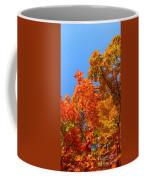 Autumn Contrasts Coffee Mug