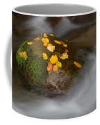 Autumn Detail Coffee Mug