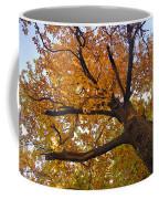 Autumn Dreams Coffee Mug
