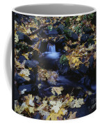 Autumn Fall Colors Starvation Creek State Park Coffee Mug