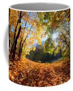 Autumn Fall Landscape In Forest Coffee Mug