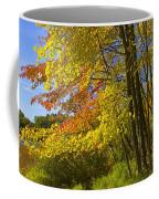 Autumn Forest Scene In West Michigan Coffee Mug