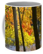 Autumn Forest Scene Coffee Mug