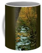 Autumn Greenbriar Cascade Coffee Mug