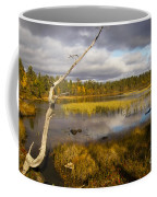 Autumn In Finland Near Inari Coffee Mug