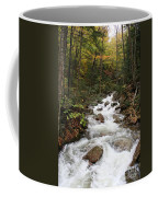 Franconia Notch In Autumn  Coffee Mug