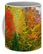 Autumn In Southwest Michigan Coffee Mug