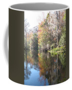 Autumn In A Swamp Coffee Mug