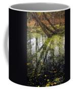 Autumn In Wildwood Park Coffee Mug