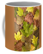 autumn is coming 5 - A carpet of autumn color leaves  Coffee Mug