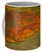Autumn Lava Flow Coffee Mug