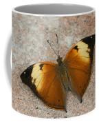 Autumn Leaf Butterfly Coffee Mug