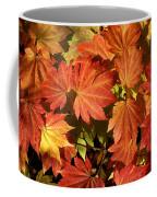 Autumn Leaves 01 Coffee Mug