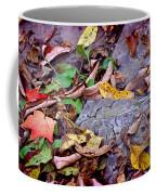 Autumn Leaves In Creek Bed Coffee Mug